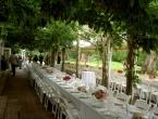 wedding wednesday vineyard